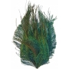 Feather Pad Peacock 8-10cm Natural